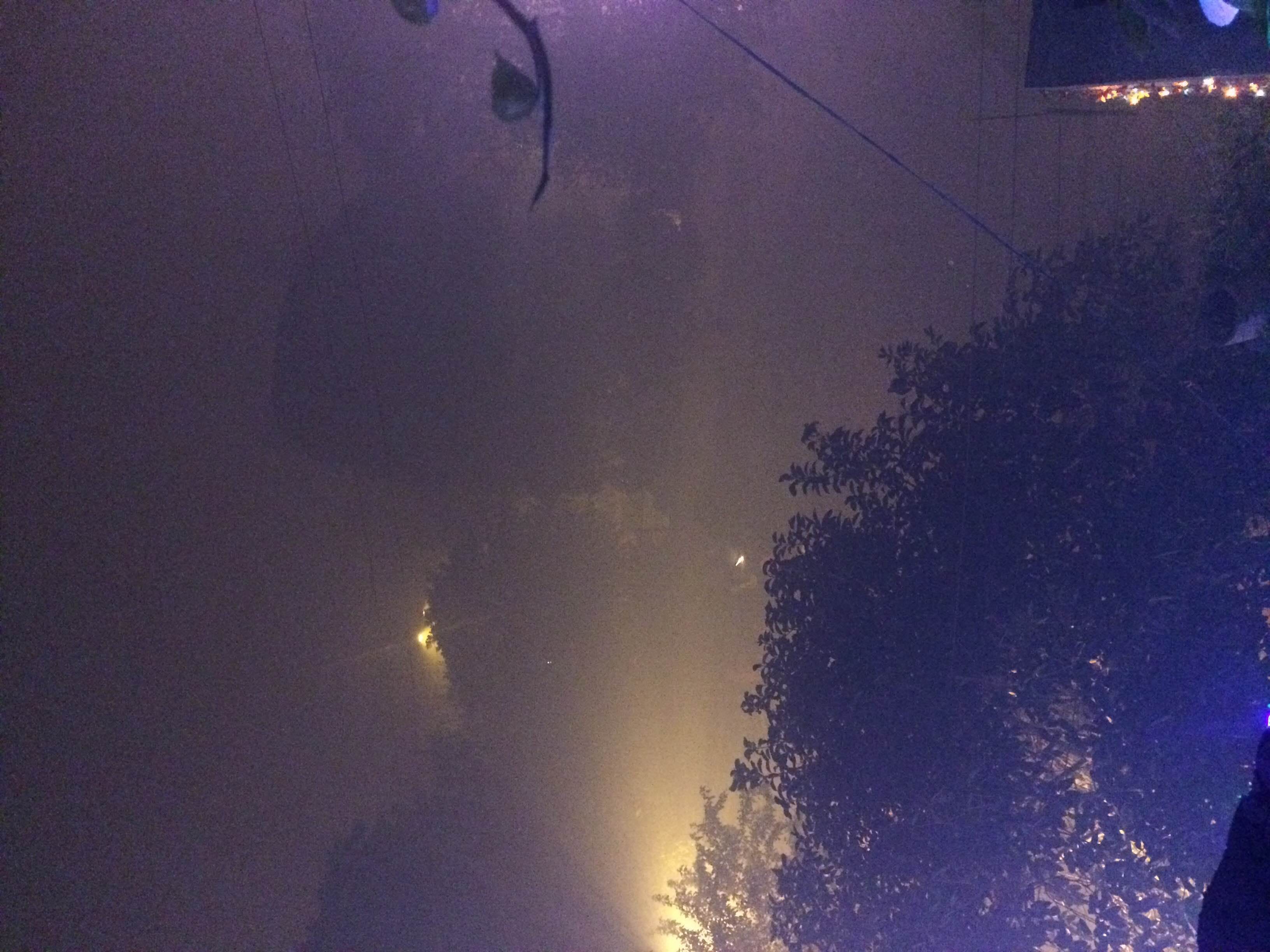 Smoky neighborhood on Diwali. Date: 1st November Time: 02:00 am